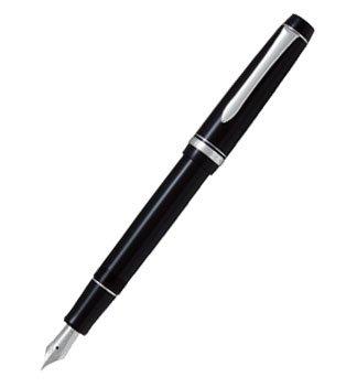 Pilot Fountain Pen Custom Heritage, modern but classy.