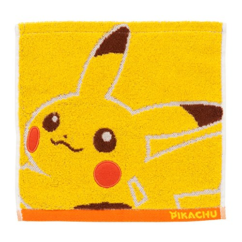 Pokemon Hand Towels!