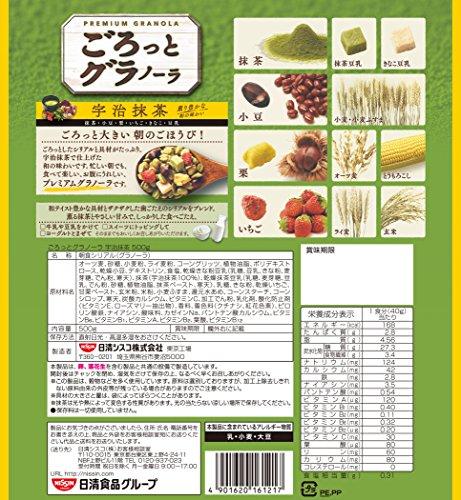 Nisshin - Gorotto Granola Matcha Taste - Fruit...